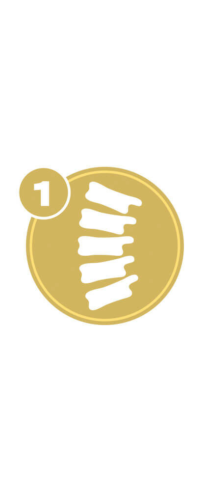 Gold circle with spine icon and number 1 representing Spine Level 1 certification.