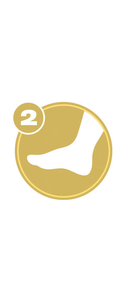 Gold circle with white foot icon and number 2 representing Lower Extremity Level 2 certification.