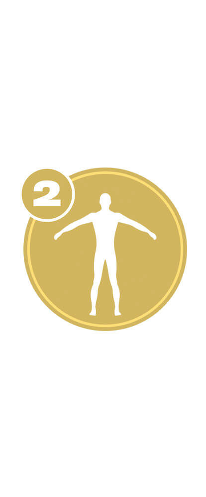 Gold circle with white full body icon and number 2 representing Full Body Level 2 certification.