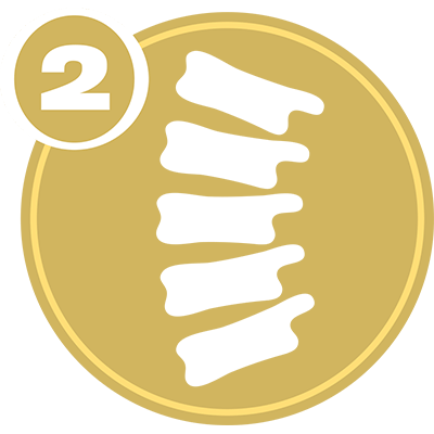 Gold circle with white spine icon and number 2 representing Spine Level 2 certification.